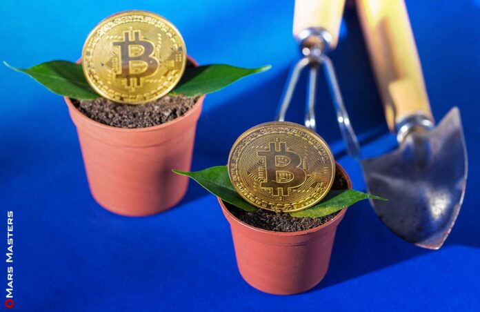 Bitcoin is beginning to become more mature Goldman Sachs said