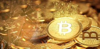 Bitcoin hits all-time high against gold
