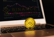 Binance Coin Trades To Record High At $175