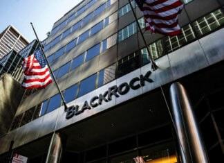 "CIO claims BlackRock has begun to ""dabble""in crypto"
