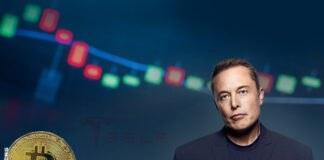 Musk is No Longer World's Richest Man