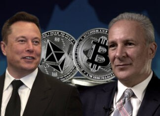 """Elon Musk says BTC, ETH prices """"high"""" while dunking on Peter Schiff"""