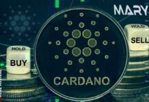 Cardano Multi-Asset 'Mary' Update Launches to Mainnet