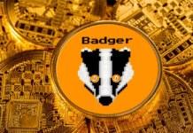 Badger DAO has announced a $21 million treasury diversification via VC copartner