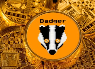 Badger DAO has announced a $21 million treasury diversification via VC copartner