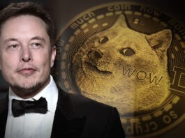 'Call Me the Dogefather': Elon Musk Explains Crypto to SNL's Audience